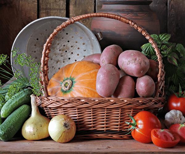 Veggie Homemade Box