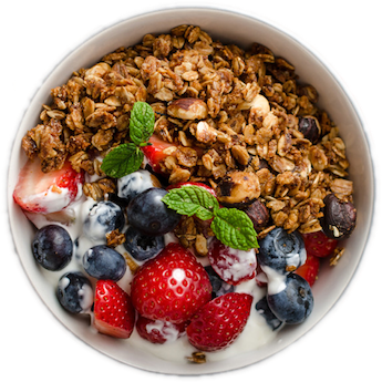 Elsie's Homemade Low-Fat Granola